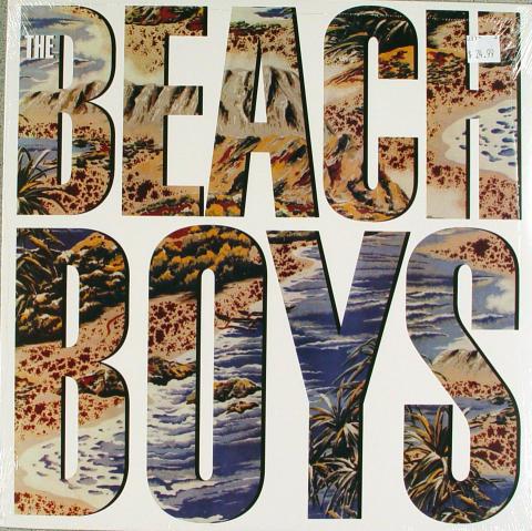 """The Beach Boys Vinyl 12"""" (New)"""
