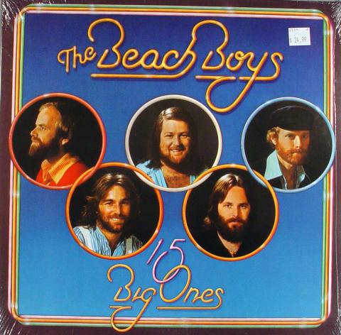"""The Beach Boys Vinyl 12"""""""