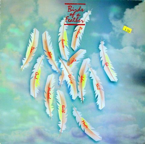 """Birds of a Feather Vinyl 12"""""""