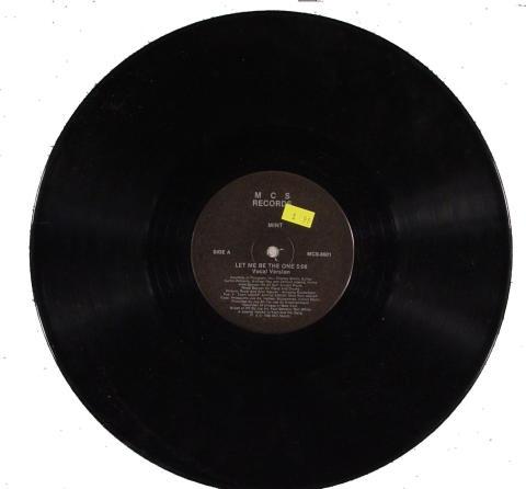 """Mint Vinyl 12"""""""
