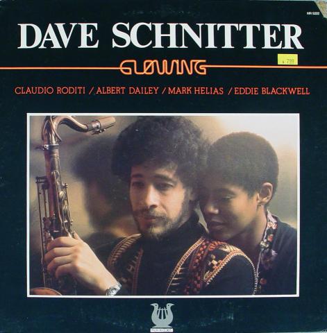"""Dave Schnitter Vinyl 12"""" (Used)"""