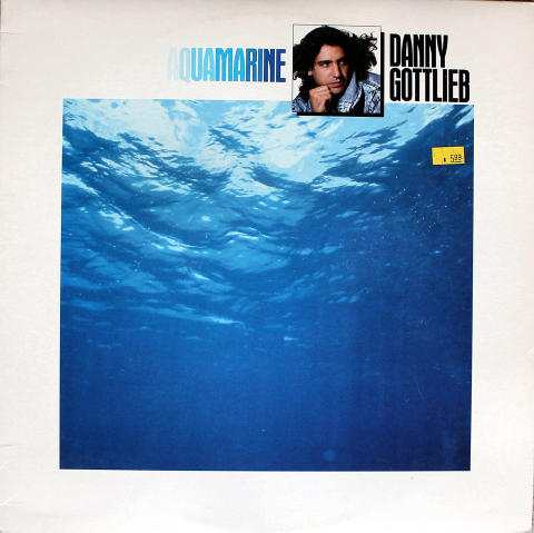 "Danny Gottlieb Vinyl 12"""