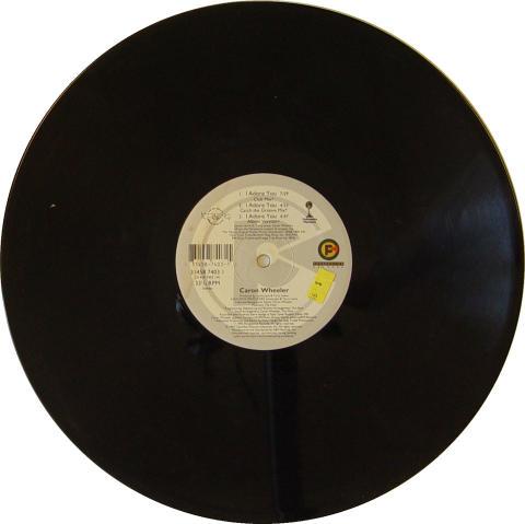 """Caron Wheeler Vinyl 12"""""""