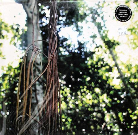 """Offsprings Vinyl 12"""""""