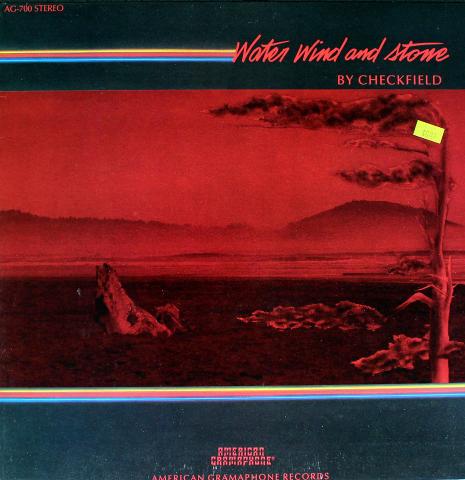 "Checkfield Vinyl 12"""