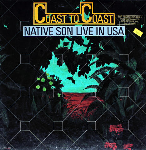 "Native Son Vinyl 12"""