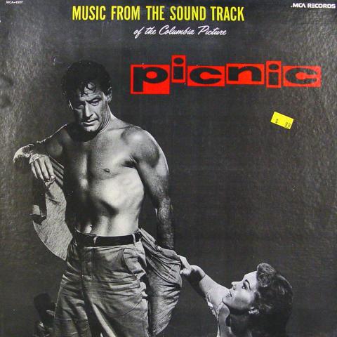 "Picnic Vinyl 12"""