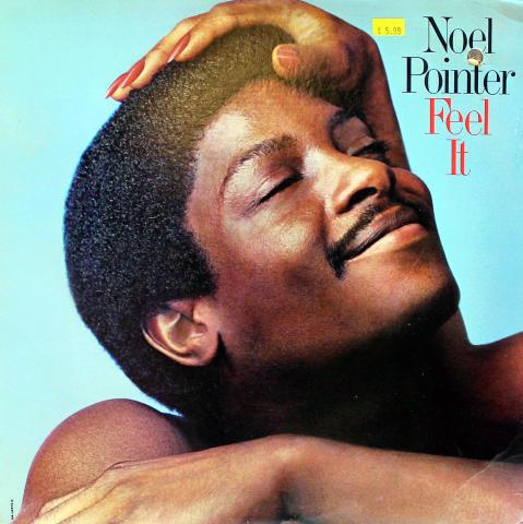 """Noel Pointer Vinyl 12"""""""