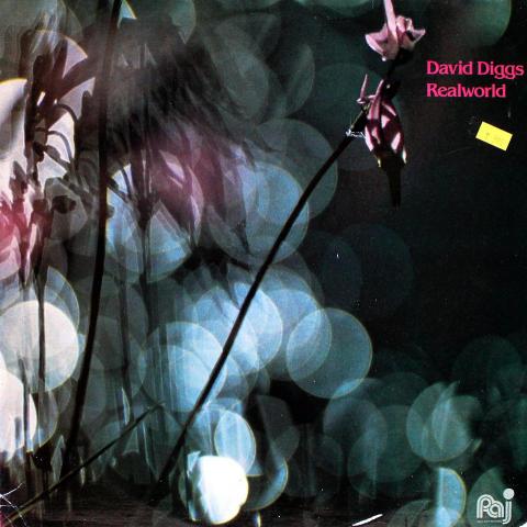 "David Diggs Vinyl 12"""