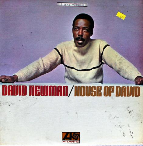 """David Newman Vinyl 12"""""""