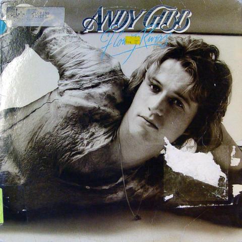 "Andy Gibb Vinyl 12"""