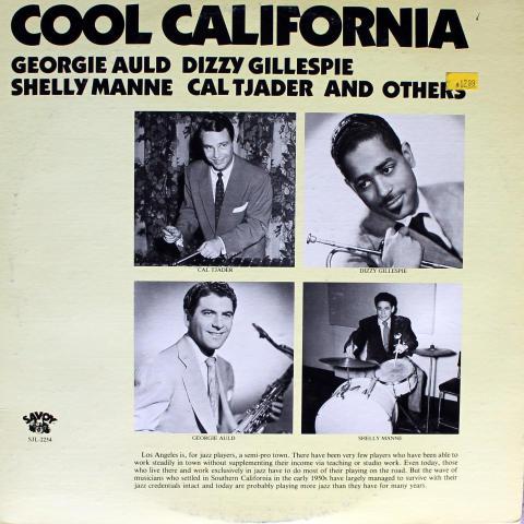 """Cool California Vinyl 12"""""""