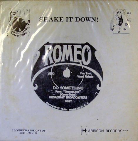 "Shake It Down! Vinyl 12"""