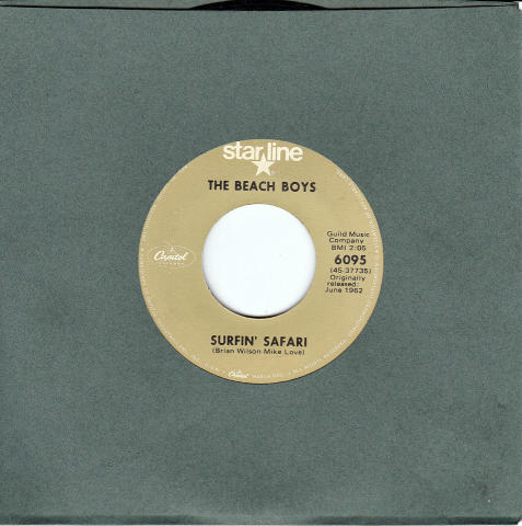 "Beach Boys Vinyl 7"" (Used)"