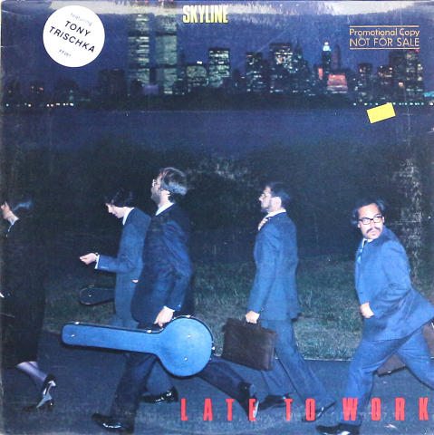"Skyline Vinyl 12"""