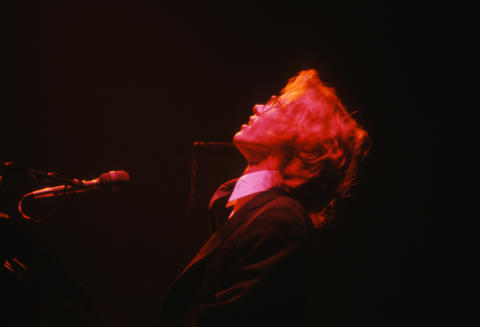 Warren Zevon Fine Art Print