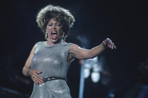 Tina Turner Fine Art Print