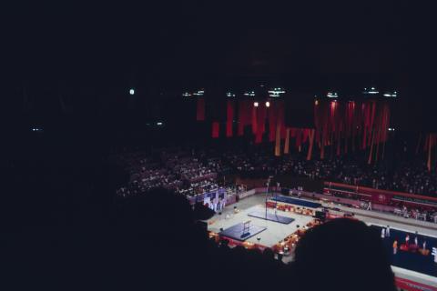 The Olympics Fine Art Print