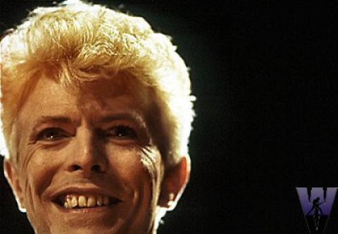 David Bowie Fine Art Print
