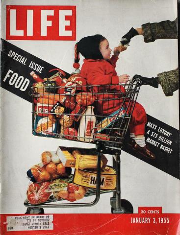 LIFE Magazine January 3, 1955