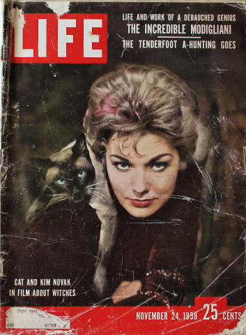LIFE Magazine November 24, 1958