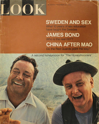 LOOK Magazine November 15, 1966