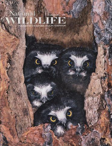 National WildLIFE