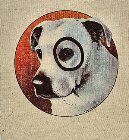 Dog Pellon