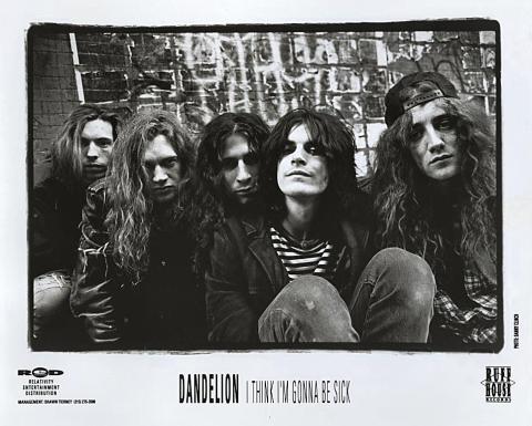 Dandelion Promo Print