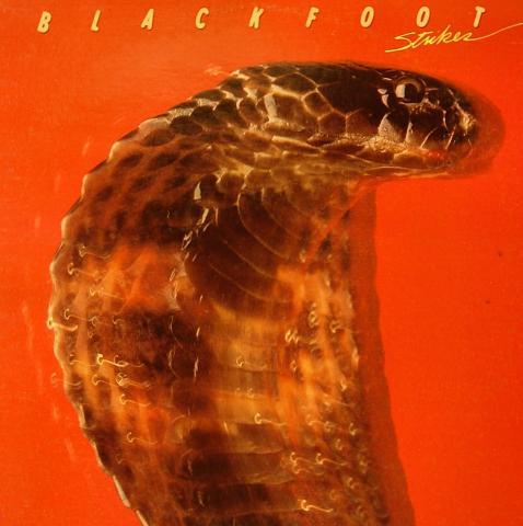 """Blackfoot Vinyl 12"""""""