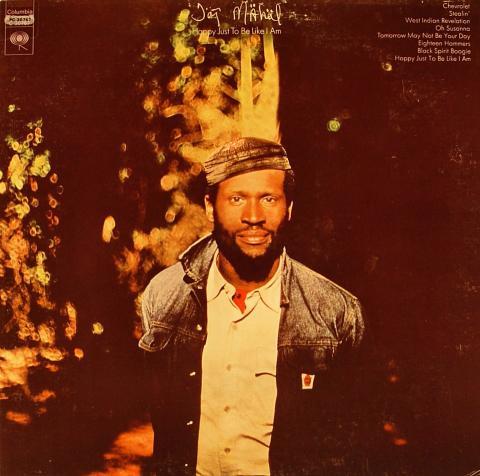 """Taj Mahal Vinyl 12"""""""