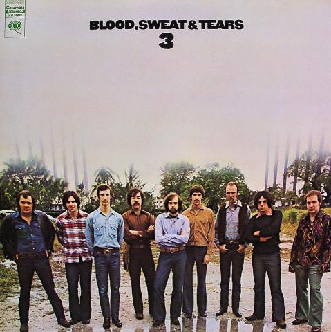 "Blood, Sweat and Tears Vinyl 12"""