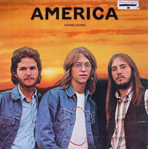 "America Vinyl 12"""