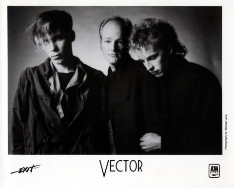 Vector Promo Print
