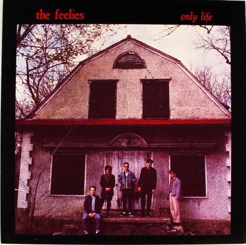 The Feelies Album Flat