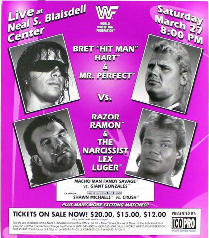 World Wrestling Federation Poster