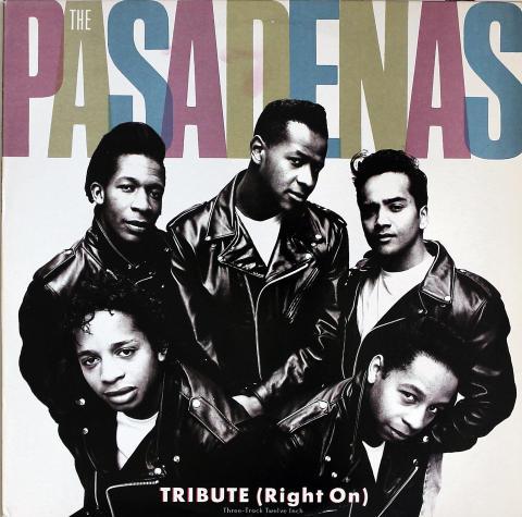 """The Pasadenas Vinyl 12"""""""