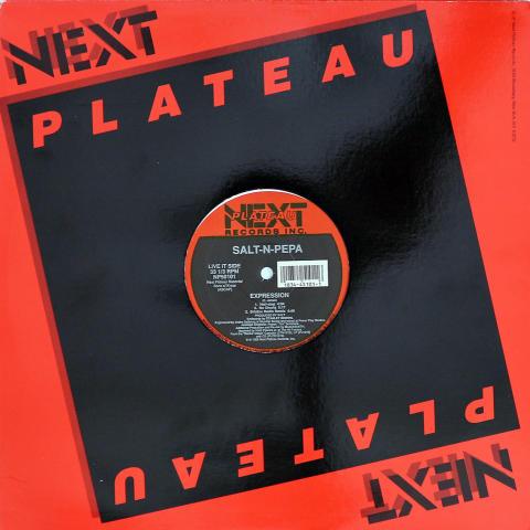 "Salt-N-Pepa Vinyl 12"""