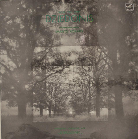 "Imants Kokars Vinyl 12"""