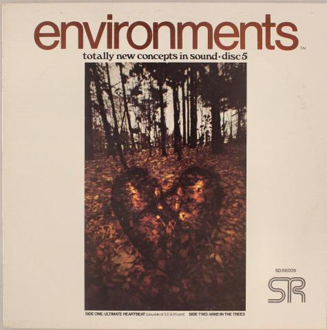 """Environments Vinyl 12"""""""