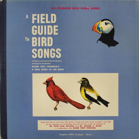 "A Field Guide To Bird Songs Vinyl 12"""