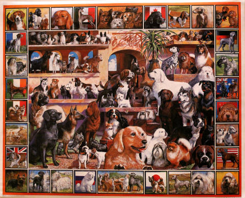White Mountain Puzzles Dogs Poster