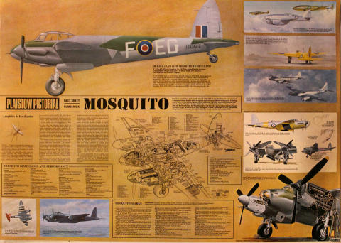 Plaistow Pictorial Fact Sheet Number Six: Mosquito Poster