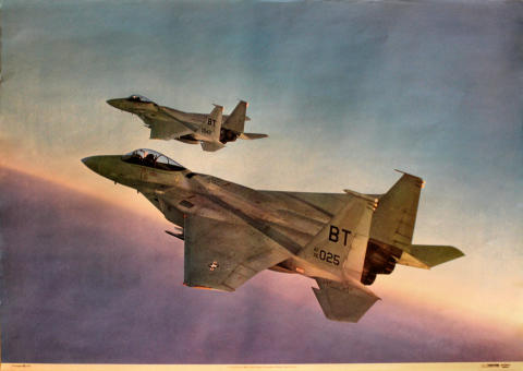 F-15 Eagle from 36th Tactical Fighter Wing Poster