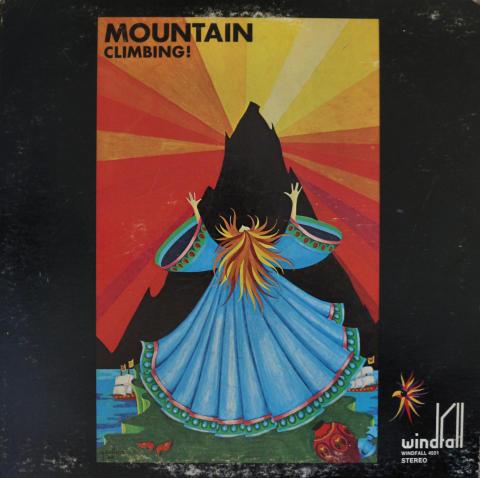 """Mountain Vinyl 12"""""""