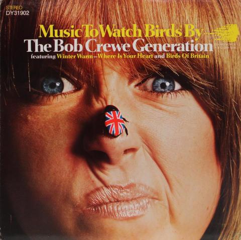 "Music To Watch Birds* By Vinyl 12"""