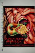 Guns N' Roses Proof