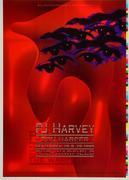 PJ Harvey Proof