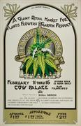The World of Plants Poster