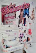 The Donnas Poster